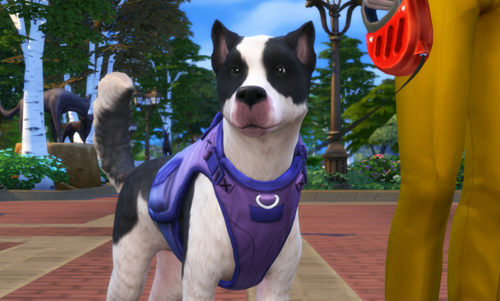 the sims 4 cani & gatti incrocio