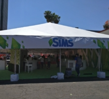The Sims 4 Stagioni: Nuove info dall'EA Play