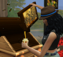 The Sims 4 Stagioni: Miele e api